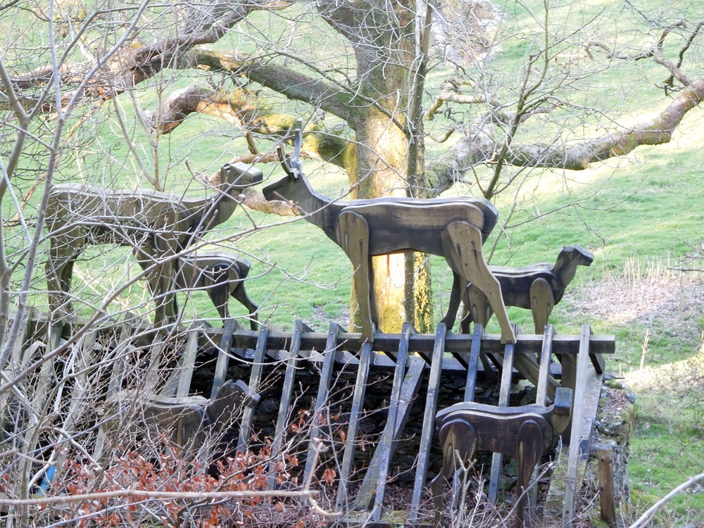 Stag herd roof. Photo Apr 2016