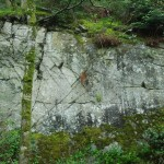 Inspiration for Natural Forces, by Karl Ciesluk? Photo 1 May 2014